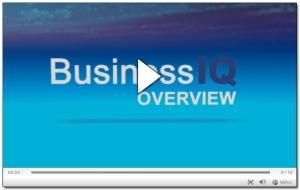 Experian-Business-IQ-Video