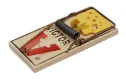 victor-mousetrap